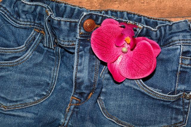 květ na džínách
